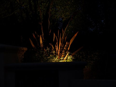 Lake Sherwood Landscape Lighting Dramatic Lighting