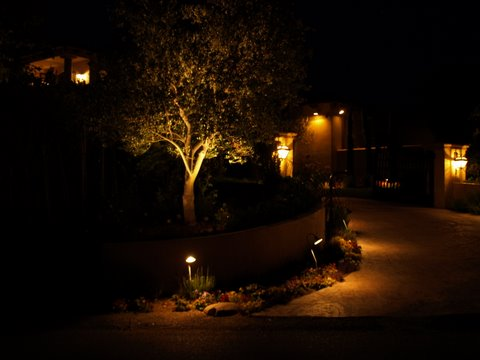 Lake Sherwood Landscape Lighting Driveway