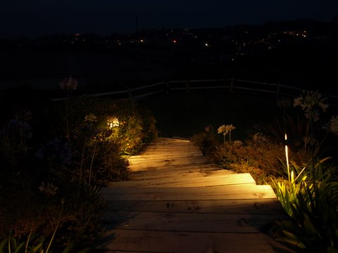 Lake Sherwood Landscape Lighting Steps