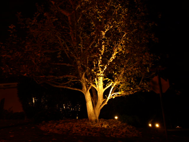 Lake Sherwood Landscape Lighting Landscape Lighting