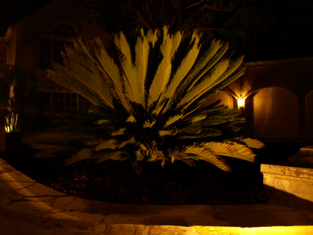 Lake Sherwood Landscape Lighting